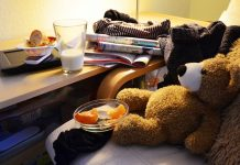 Teddy bear with bowl of fruit and milk